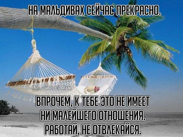 VMR2L5S6_MM